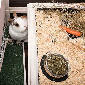 meilleure cage à lapin d'intérieur