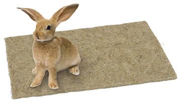 meilleure litière pour lapin