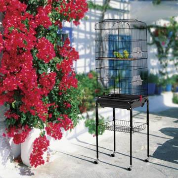meilleure cage à oiseaux