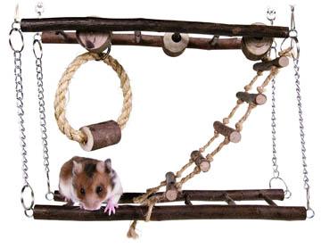meilleur jouet pour hamster